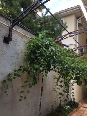 Сварочные работы, навесы, козырьки, балконы, арки, металлоконструкции (фото 979)