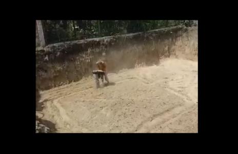 Устройство фундаментов - фундамент любой сложности Одесса (видео 1)